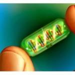 Το πιο ακριβό φάρμακο στον κόσμο κάνει 1.000.000 ευρώ! Δείτε τι θεραπεύει…