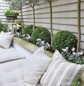 ΖzZzZz! 4+1 φυτά που θα διώξουν τα ανεπιθύμητα κουνούπια από το σπίτι σας