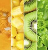 Δείτε τι αντιπροσωπεύει το χρώμα των φρούτων και των λαχανικών