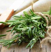 Τα 7 βότανα και μπαχαρικά που πολεμούν τον καρκίνο και άλλες παθήσεις.