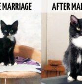9 φωτογραφίες που δείχνουν τις αλλαγές… μετά τον γάμο