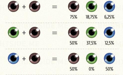 Σε ποιον θα μοιάσει το παιδί: Μάτια, μαλλιά και χαρακτηριστικά. (οδηγός)
