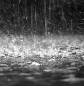 ΕΜΥ:Έκτακτο δελτίο επιδείνωσης καιρού με ισχυρές βροχές, καταιγίδες και χαλαζοπτώσεις.
