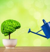 O τρόπος που θα βελτιώσετε τις νοητικές σας ικανότητες ,σύμφωνα με έρευνα πανεπιστημίου .